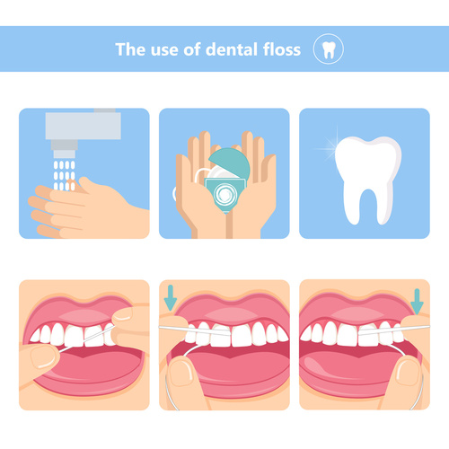 how to properly floss teeth graphic